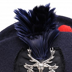 Authentic plume hackle for Scottish military and civilian headwear. Can be worn with a glengarry or with a balmoral. As supplied to the Ministry of Defence (MOD) for over 30 years. These hackles
